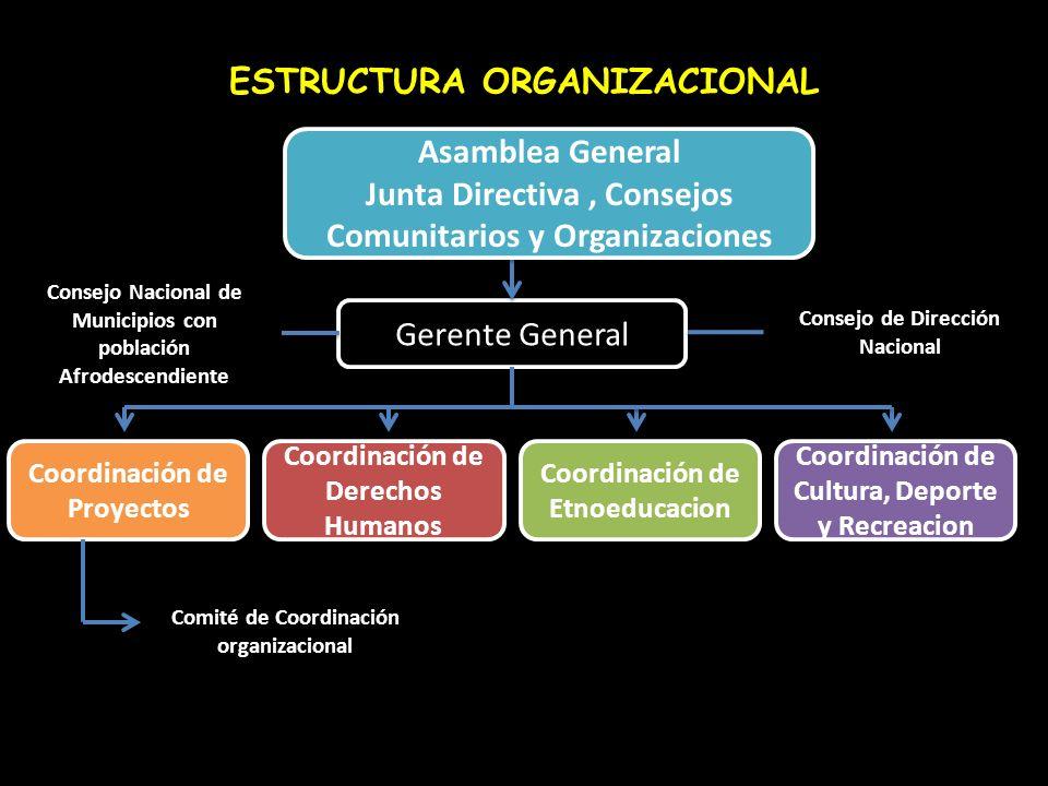 ESTRUCTURA ORGANIZACIONAL Gerente General Coordinación de Proyectos Coordinación de Derechos Humanos Coordinación de Etnoeducacion Coordinación de Cul