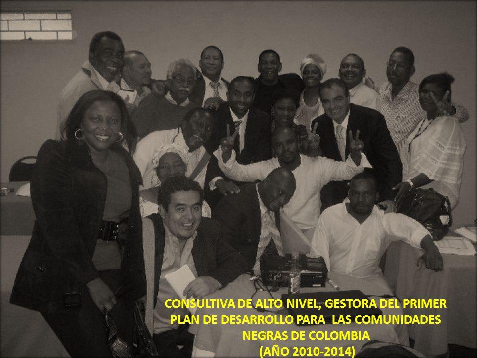 CONSULTIVA DE ALTO NIVEL, GESTORA DEL PRIMER PLAN DE DESARROLLO PARA LAS COMUNIDADES NEGRAS DE COLOMBIA (AÑO 2010-2014)