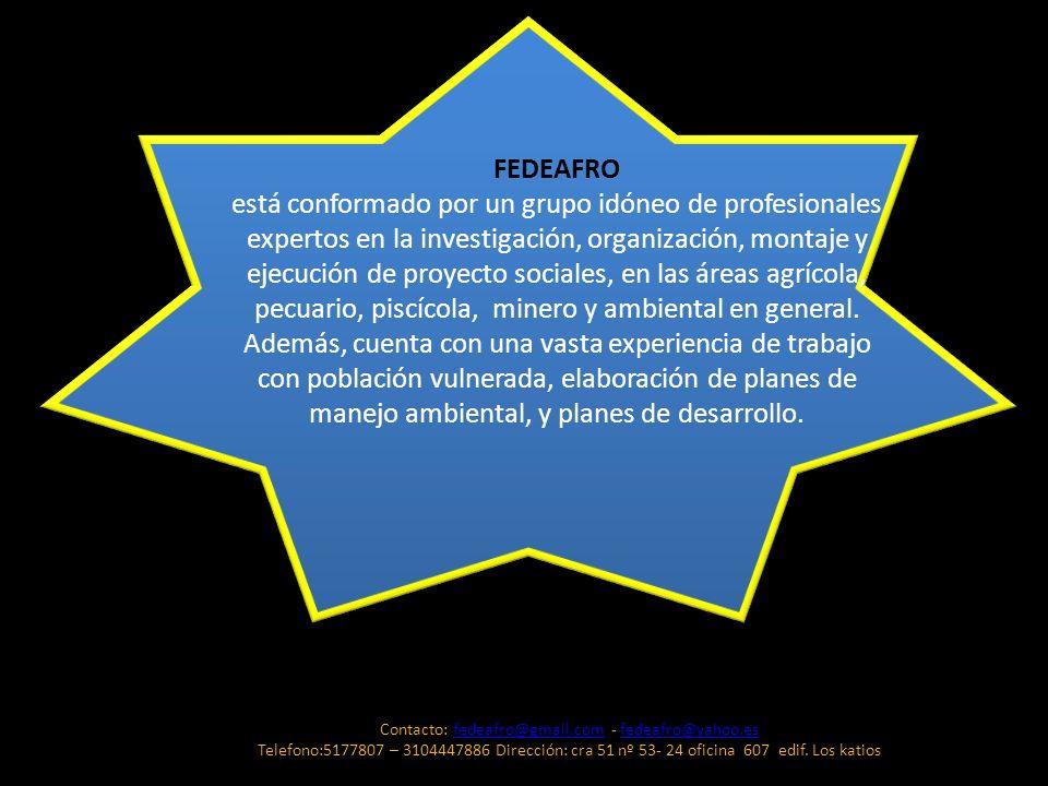 FEDEAFRO está conformado por un grupo idóneo de profesionales expertos en la investigación, organización, montaje y ejecución de proyecto sociales, en