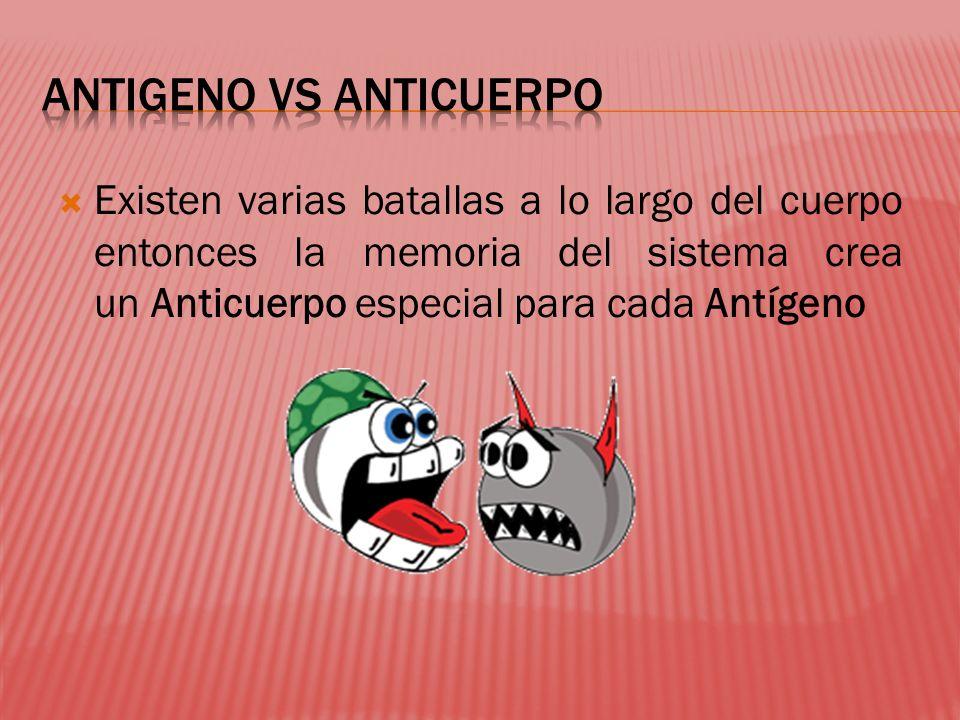 Existen varias batallas a lo largo del cuerpo entonces la memoria del sistema crea un Anticuerpo especial para cada Antígeno