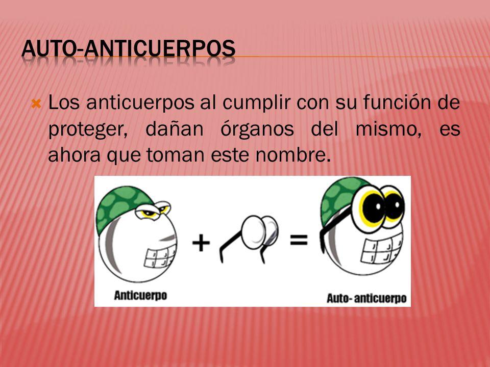 Los anticuerpos al cumplir con su función de proteger, dañan órganos del mismo, es ahora que toman este nombre.