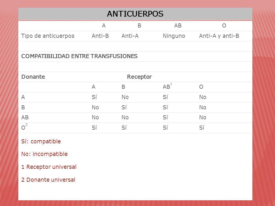 ANTICUERPOS ABABO Tipo de anticuerposAnti-BAnti-ANingunoAnti-A y anti-B COMPATIBILIDAD ENTRE TRANSFUSIONES DonanteReceptor ABAB 1 O ASíNoSíNo B Sí No ABNo SíNo O2O2 Sí Sí: compatible No: incompatible 1 Receptor universal 2 Donante universal