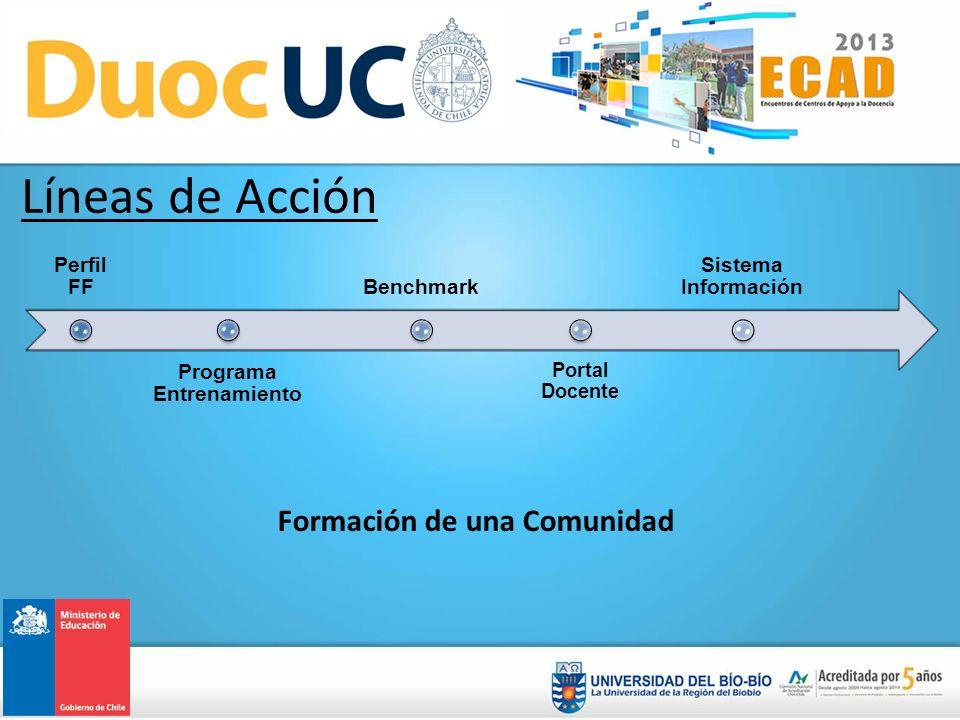 Perfil FF Programa Entrenamiento Benchmark Portal Docente Sistema Información Formación de una Comunidad Líneas de Acción
