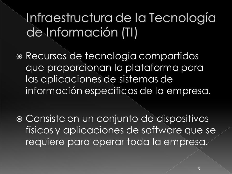 Recursos de tecnología compartidos que proporcionan la plataforma para las aplicaciones de sistemas de información especificas de la empresa. Consiste