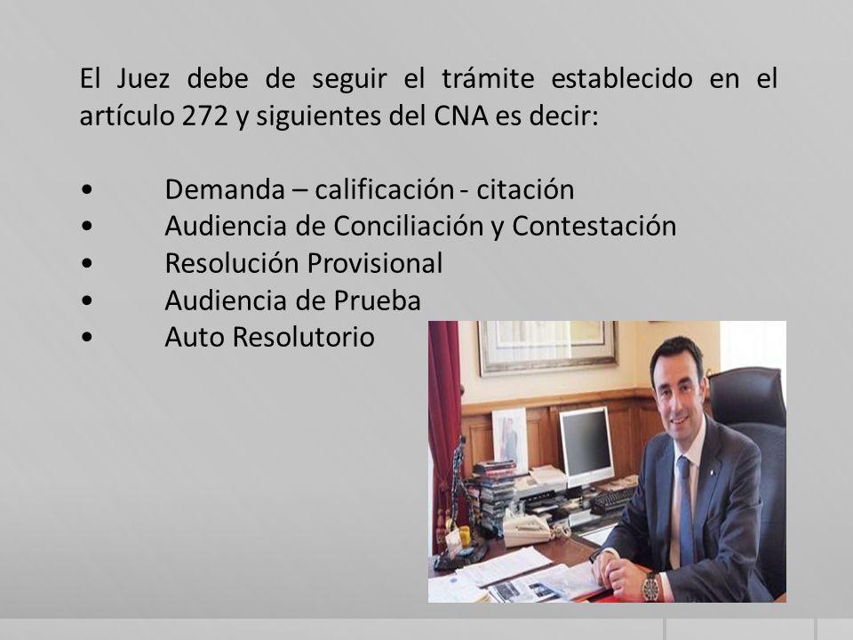 El Juez debe de seguir el trámite establecido en el artículo 272 y siguientes del CNA es decir: Demanda – calificación - citación Audiencia de Conciliación y Contestación Resolución Provisional Audiencia de Prueba Auto Resolutorio