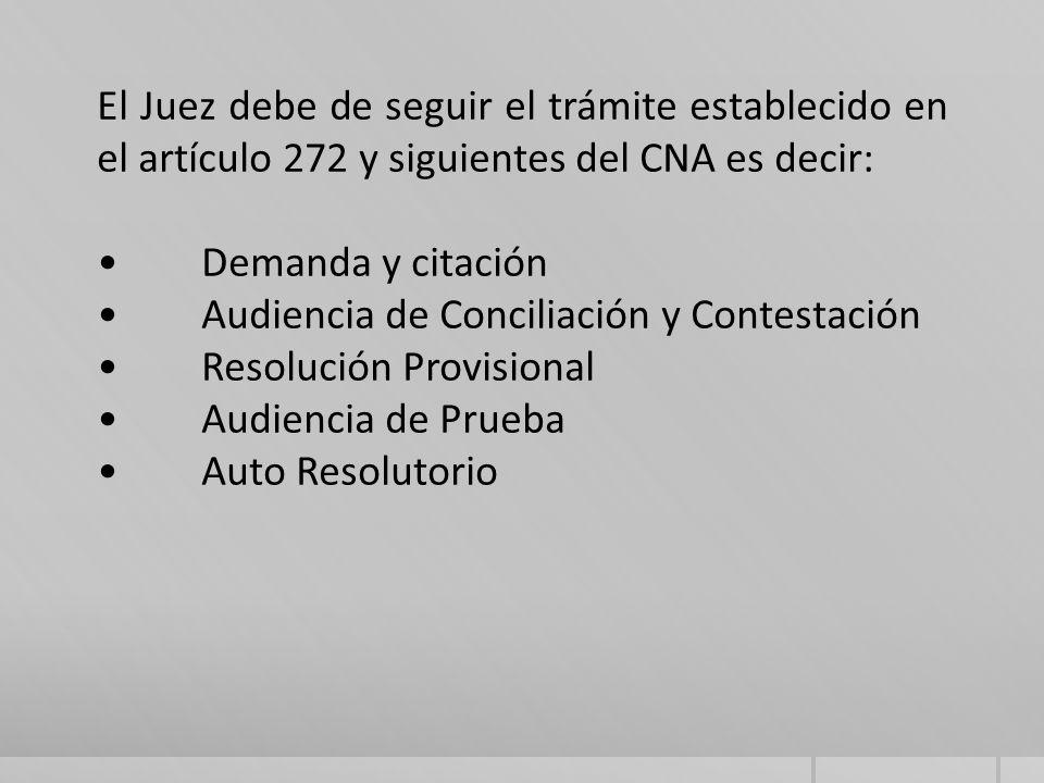 El Juez debe de seguir el trámite establecido en el artículo 272 y siguientes del CNA es decir: Demanda y citación Audiencia de Conciliación y Contestación Resolución Provisional Audiencia de Prueba Auto Resolutorio