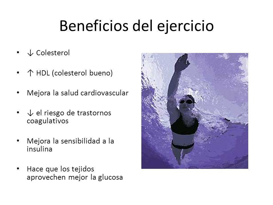 Beneficios del ejercicio Colesterol HDL (colesterol bueno) Mejora la salud cardiovascular el riesgo de trastornos coagulativos Mejora la sensibilidad a la insulina Hace que los tejidos aprovechen mejor la glucosa