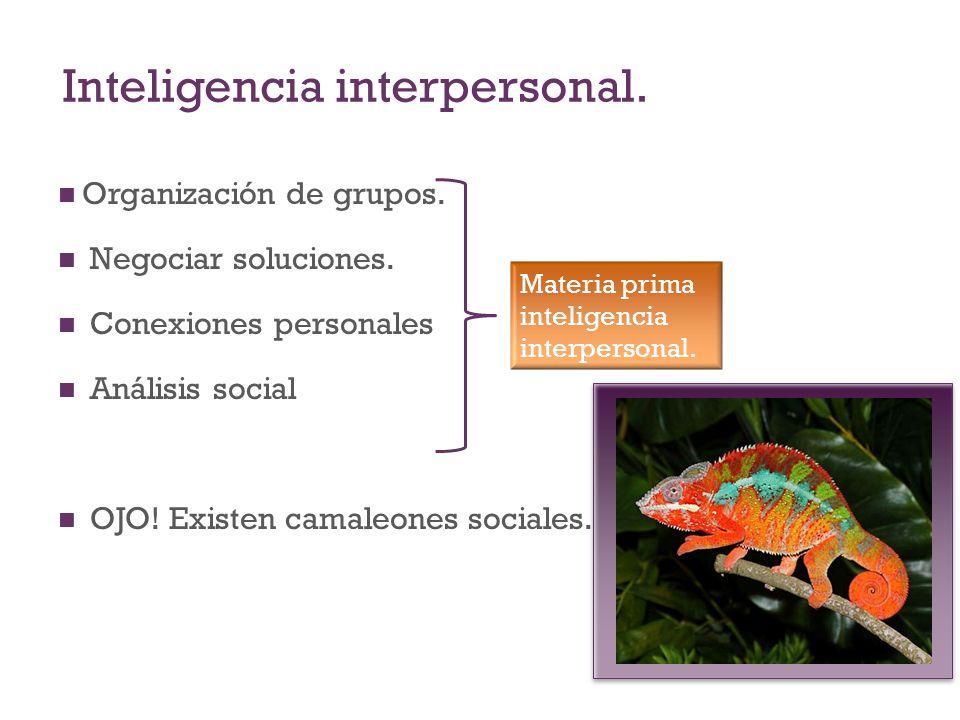 Inteligencia interpersonal. Organización de grupos. Negociar soluciones. Conexiones personales Análisis social OJO! Existen camaleones sociales. Mater
