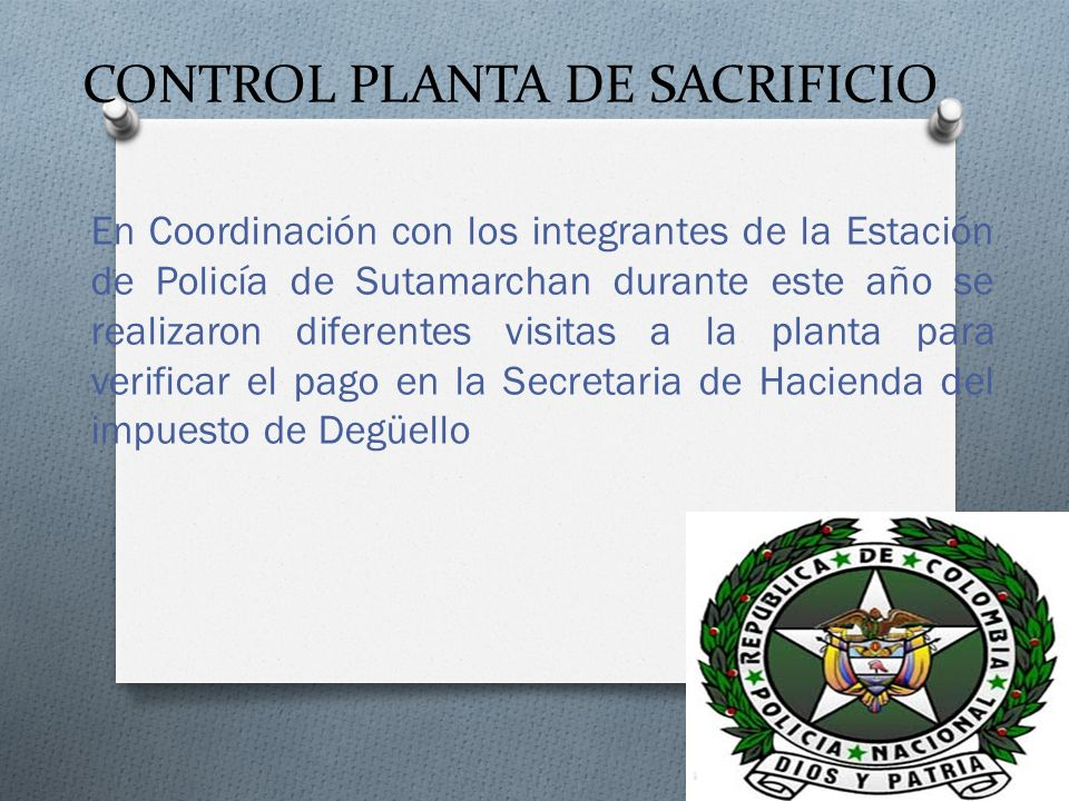 CONTROL PLANTA DE SACRIFICIO En Coordinación con los integrantes de la Estación de Policía de Sutamarchan durante este año se realizaron diferentes vi