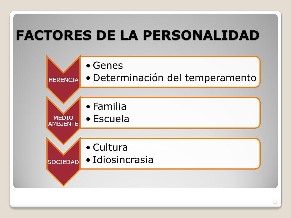 FACTORES DE LA PERSONALIDAD 13 HERENCIA Genes Determinación del temperamento MEDIO AMBIENTE Familia Escuela SOCIEDAD Cultura Idiosincrasia