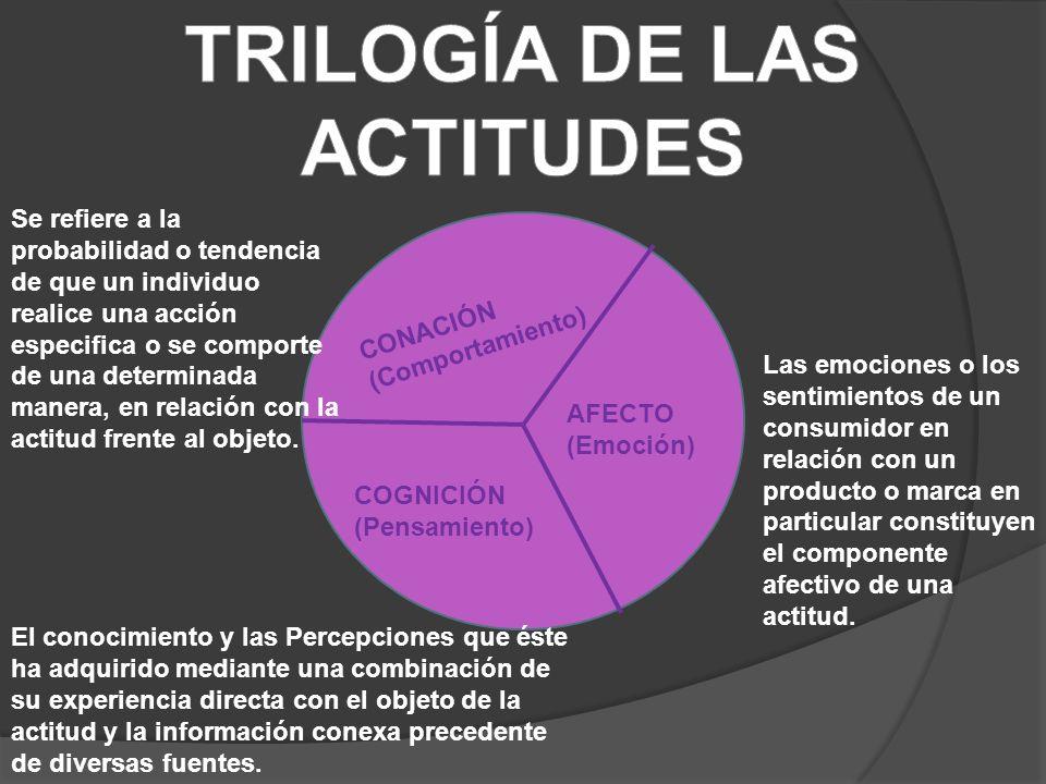 CONACIÓN (Comportamiento) AFECTO (Emoción) COGNICIÓN (Pensamiento) El conocimiento y las Percepciones que éste ha adquirido mediante una combinación de su experiencia directa con el objeto de la actitud y la información conexa precedente de diversas fuentes.