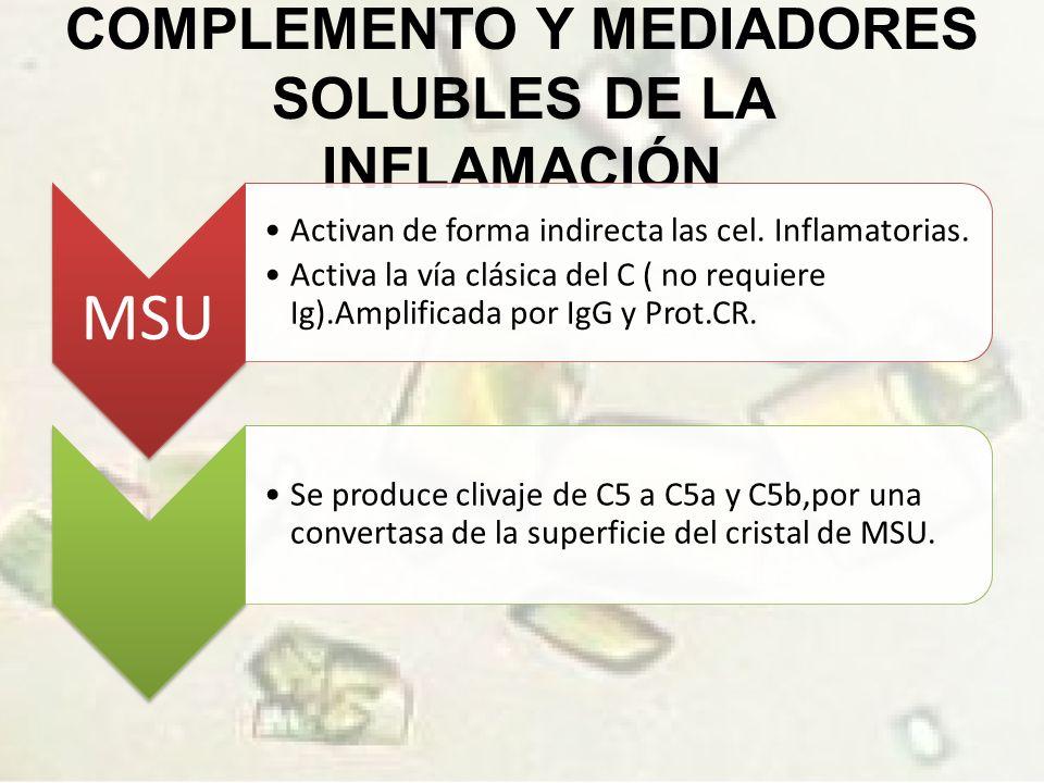 COMPLEMENTO Y MEDIADORES SOLUBLES DE LA INFLAMACIÓN MSU Activan de forma indirecta las cel.