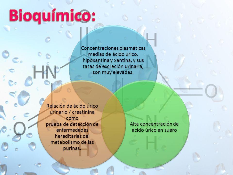 Concentraciones plasmáticas medias de ácido úrico, hipoxantina y xantina, y sus tasas de excreción urinaria, son muy elevadas.