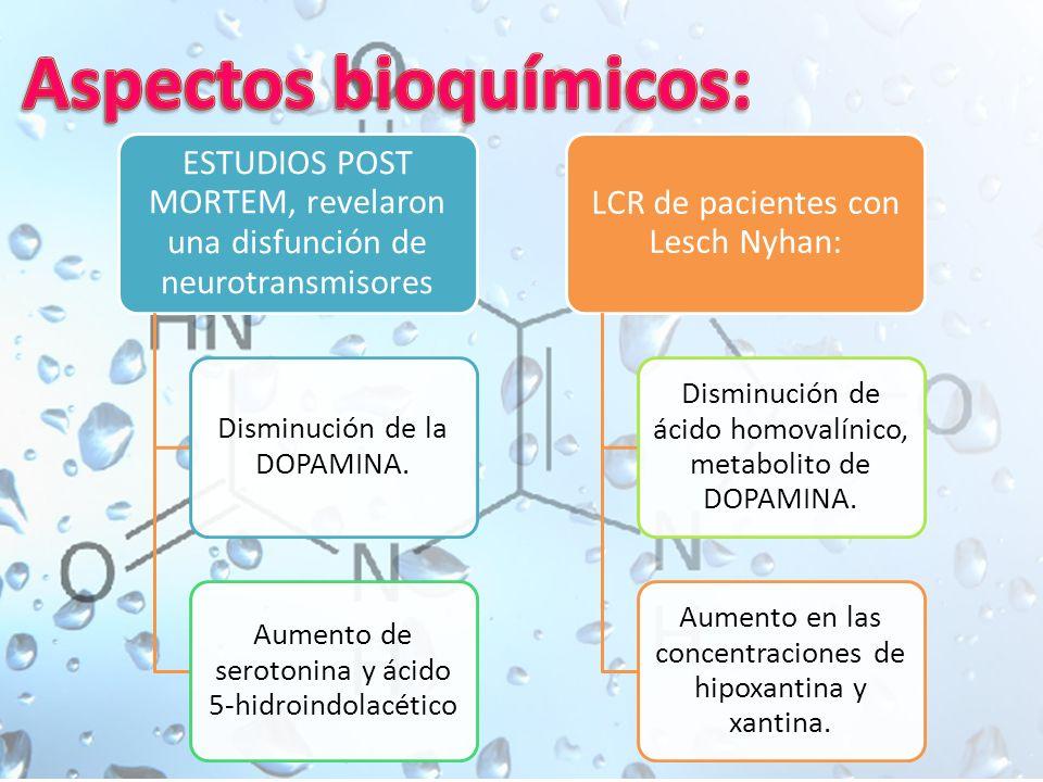 ESTUDIOS POST MORTEM, revelaron una disfunción de neurotransmisores Disminución de la DOPAMINA.