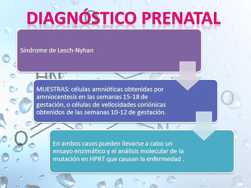 Síndrome de Lesch-Nyhan MUESTRAS: células amnióticas obtenidas por amniocentesis en las semanas 15-18 de gestación, o células de vellosidades coriónicas obtenidos de las semanas 10-12 de gestación.