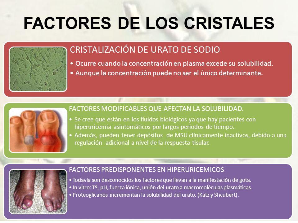 FACTORES DE LOS CRISTALES CRISTALIZACIÓN DE URATO DE SODIO Ocurre cuando la concentración en plasma excede su solubilidad.