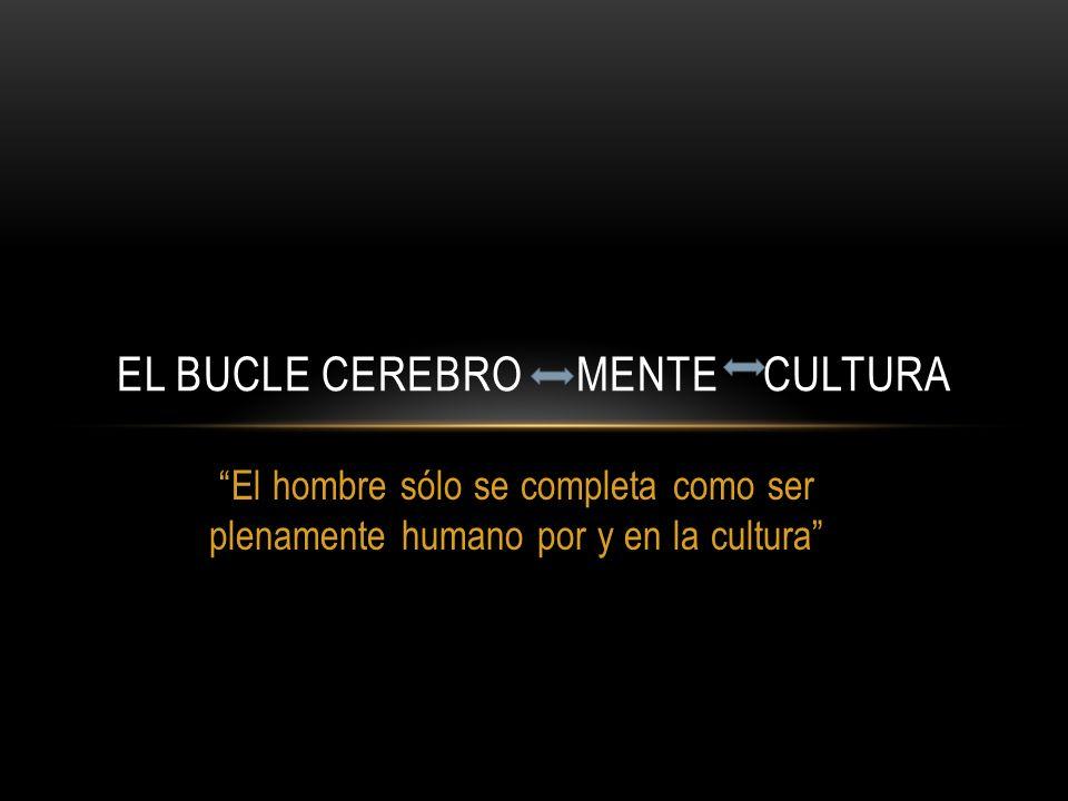 EL BUCLE CEREBRO MENTE CULTURA El hombre sólo se completa como ser plenamente humano por y en la cultura