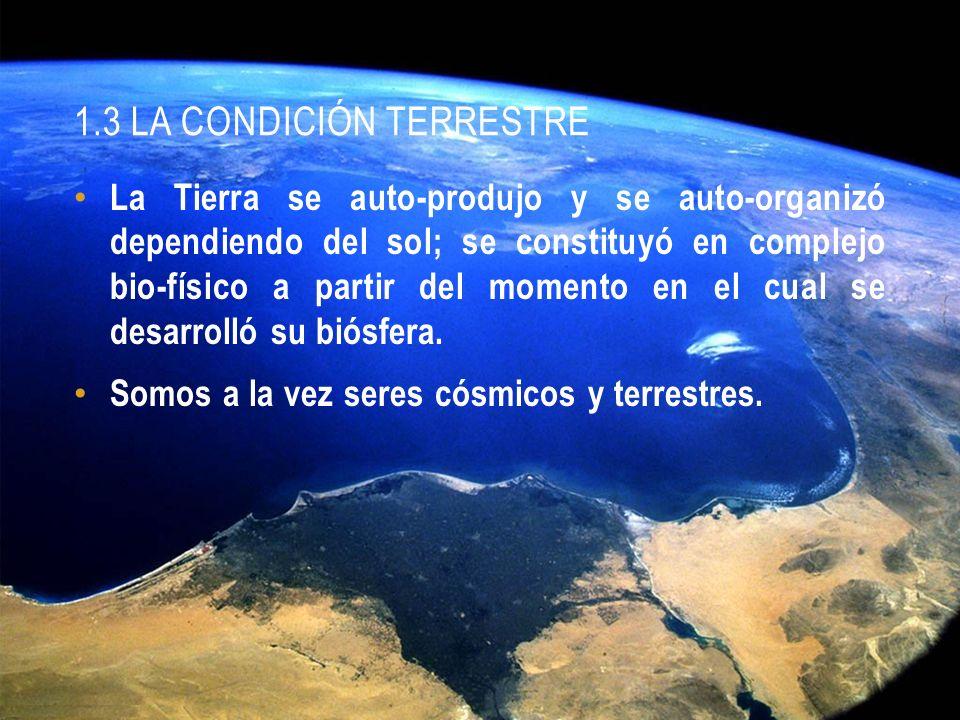 1.3 LA CONDICIÓN TERRESTRE La Tierra se auto-produjo y se auto-organizó dependiendo del sol; se constituyó en complejo bio-físico a partir del momento