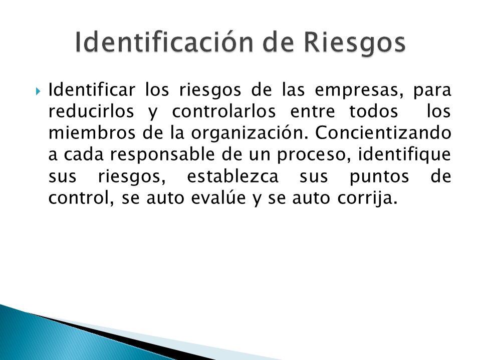 Identificar los riesgos de las empresas, para reducirlos y controlarlos entre todos los miembros de la organización. Concientizando a cada responsable