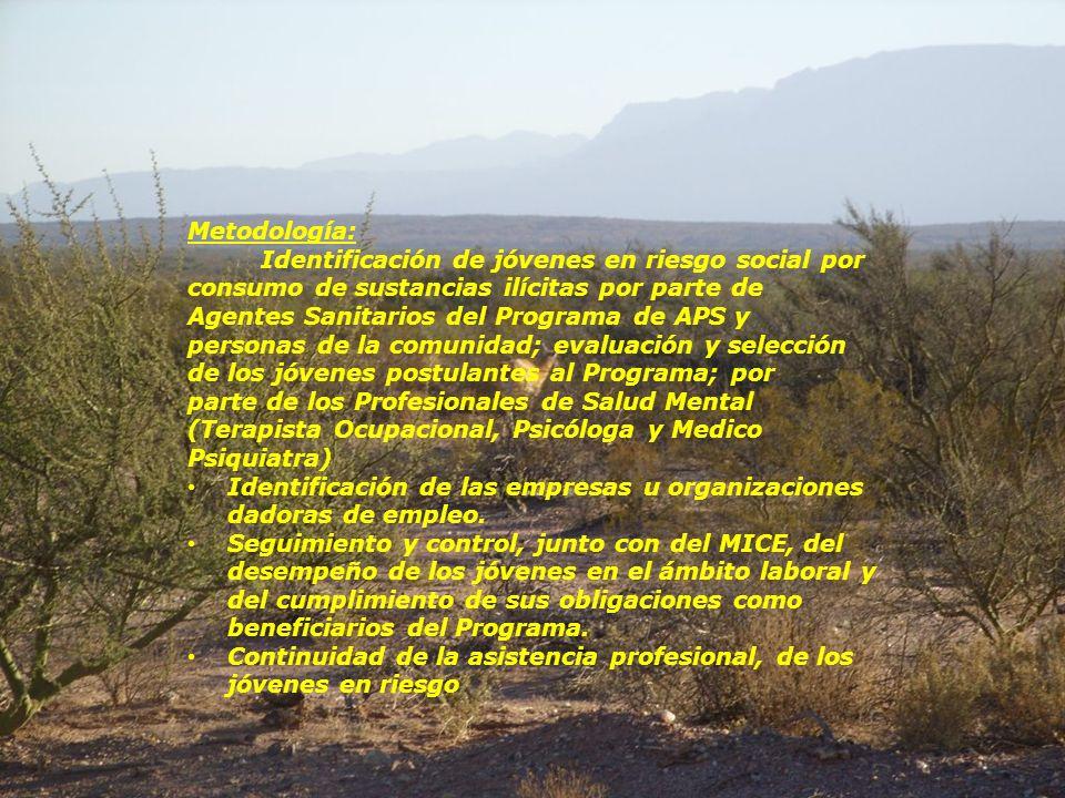 Objetivo: Conformación de una red de atención junto al Ministerio de Industria, Comercio y Empleo, a través de la implementación del Programa Escuela