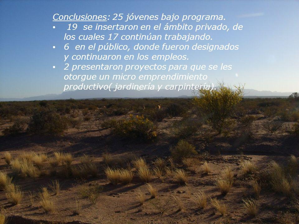 Conclusiones: 25 jóvenes bajo programa.