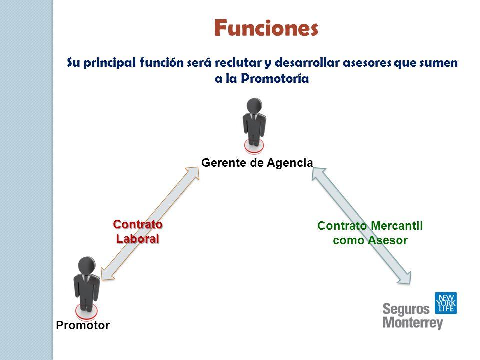 Funciones Su principal función será reclutar y desarrollar asesores que sumen a la Promotoría Contrato Laboral Contrato Mercantil como Asesor Gerente