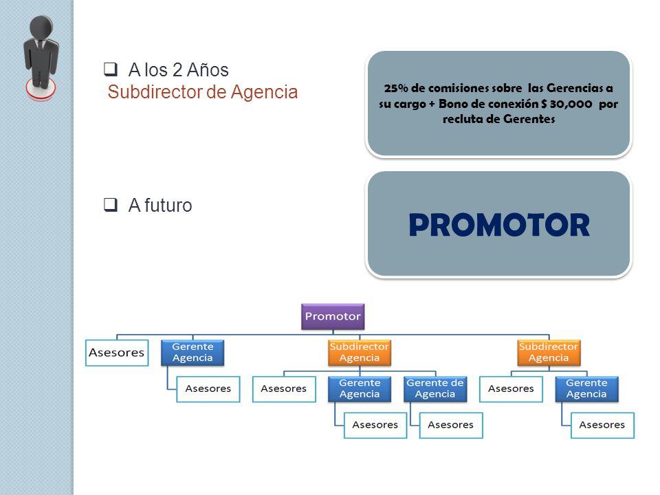 A los 2 Años Subdirector de Agencia 25% de comisiones sobre las Gerencias a su cargo + Bono de conexión $ 30,000 por recluta de Gerentes A futuro PROM
