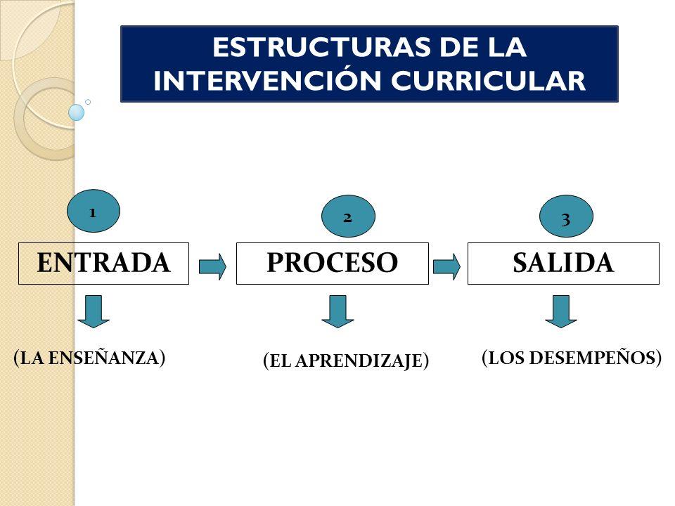 ENTRADAPROCESOSALIDA (LA ENSEÑANZA) (EL APRENDIZAJE) (LOS DESEMPEÑOS) 1 23 ESTRUCTURAS DE LA INTERVENCIÓN CURRICULAR