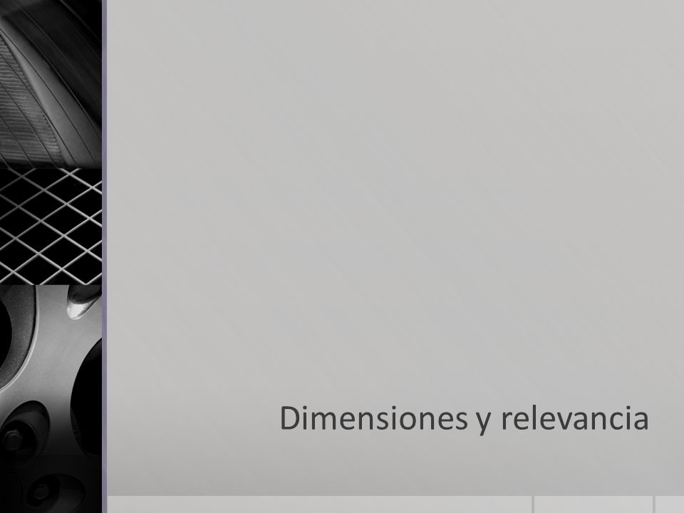 Dimensiones y relevancia