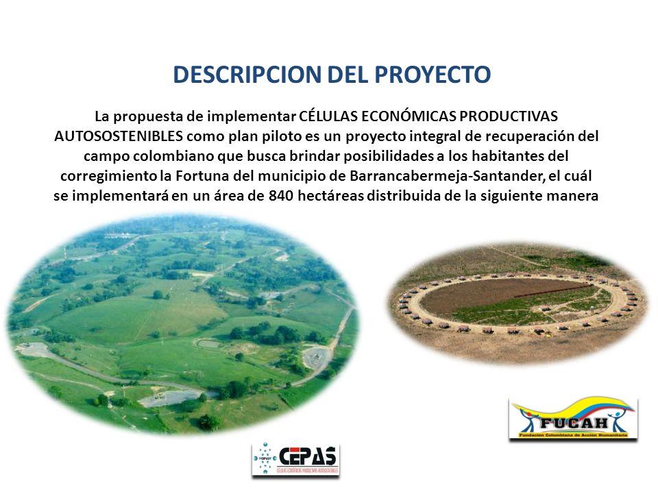 La propuesta de implementar CÉLULAS ECONÓMICAS PRODUCTIVAS AUTOSOSTENIBLES como plan piloto es un proyecto integral de recuperación del campo colombia