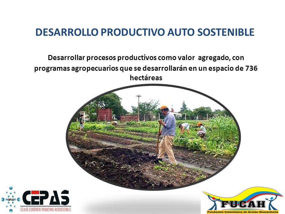 Desarrollar procesos productivos como valor agregado, con programas agropecuarios que se desarrollarán en un espacio de 736 hectáreas DESARROLLO PRODU