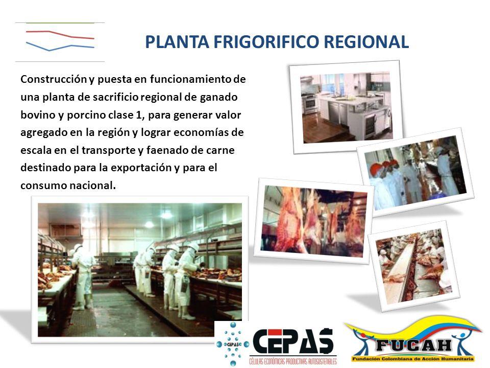Construcción y puesta en funcionamiento de una planta de sacrificio regional de ganado bovino y porcino clase 1, para generar valor agregado en la reg