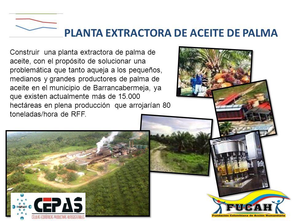 Construir una planta extractora de palma de aceite, con el propósito de solucionar una problemática que tanto aqueja a los pequeños, medianos y grande