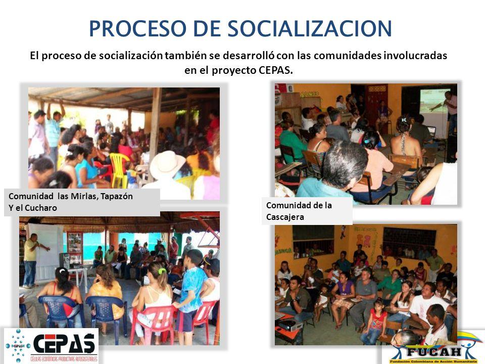 PROCESO DE SOCIALIZACION El proceso de socialización también se desarrolló con las comunidades involucradas en el proyecto CEPAS. Comunidad las Mirlas