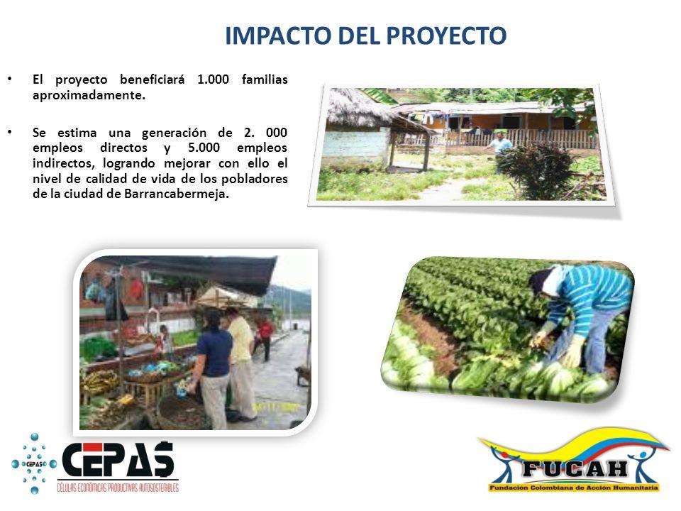 IMPACTO DEL PROYECTO El proyecto beneficiará 1.000 familias aproximadamente. Se estima una generación de 2. 000 empleos directos y 5.000 empleos indir