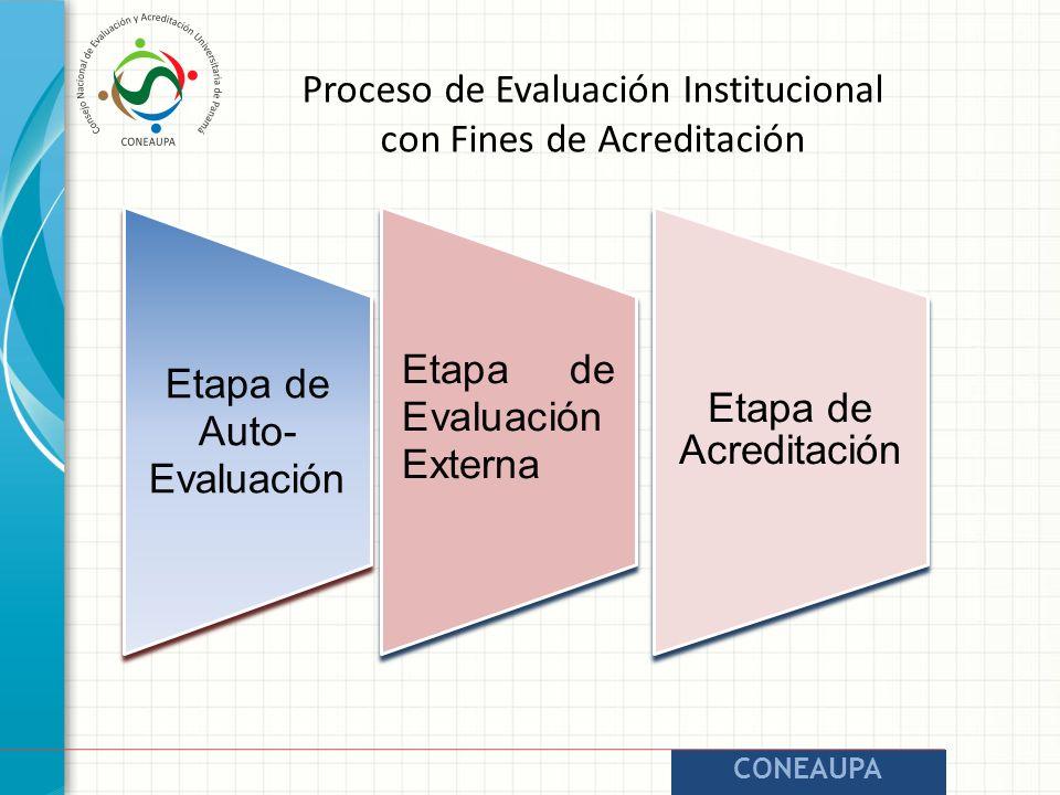 CONEAUPA Etapa de Auto- Evaluación Etapa de Evaluación Externa Etapa de Acreditación Proceso de Evaluación Institucional con Fines de Acreditación