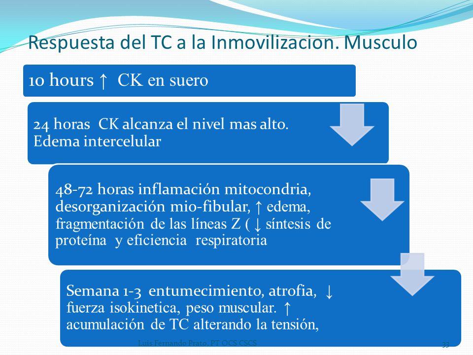 10 hours CK en suero 24 horas CK alcanza el nivel mas alto. Edema intercelular 48-72 horas inflamación mitocondria, desorganización mio-fibular, edema