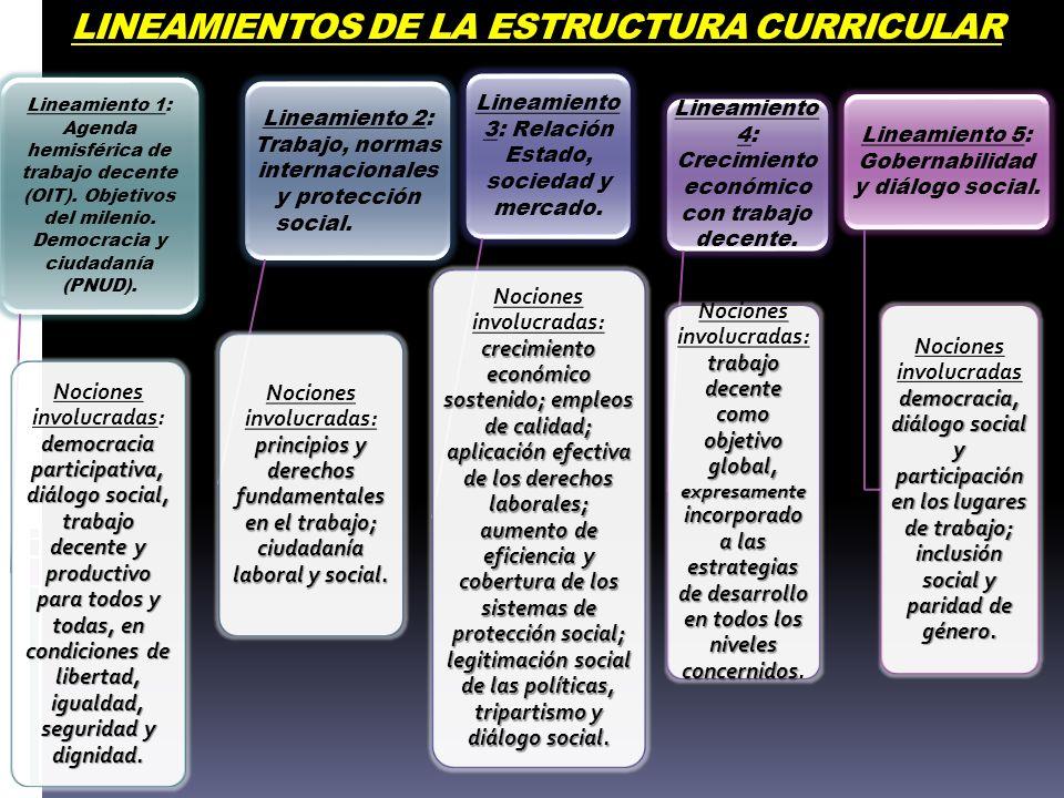 LINEAMIENTOS DE LA ESTRUCTURA CURRICULAR Lineamiento 1: Agenda hemisférica de trabajo decente (OIT). Objetivos del milenio. Democracia y ciudadanía (P