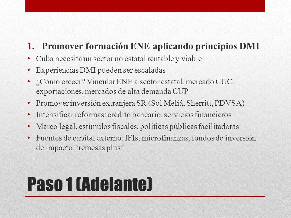 Paso 1 (Adelante) 1.Promover formación ENE aplicando principios DMI Cuba necesita un sector no estatal rentable y viable Experiencias DMI pueden ser e