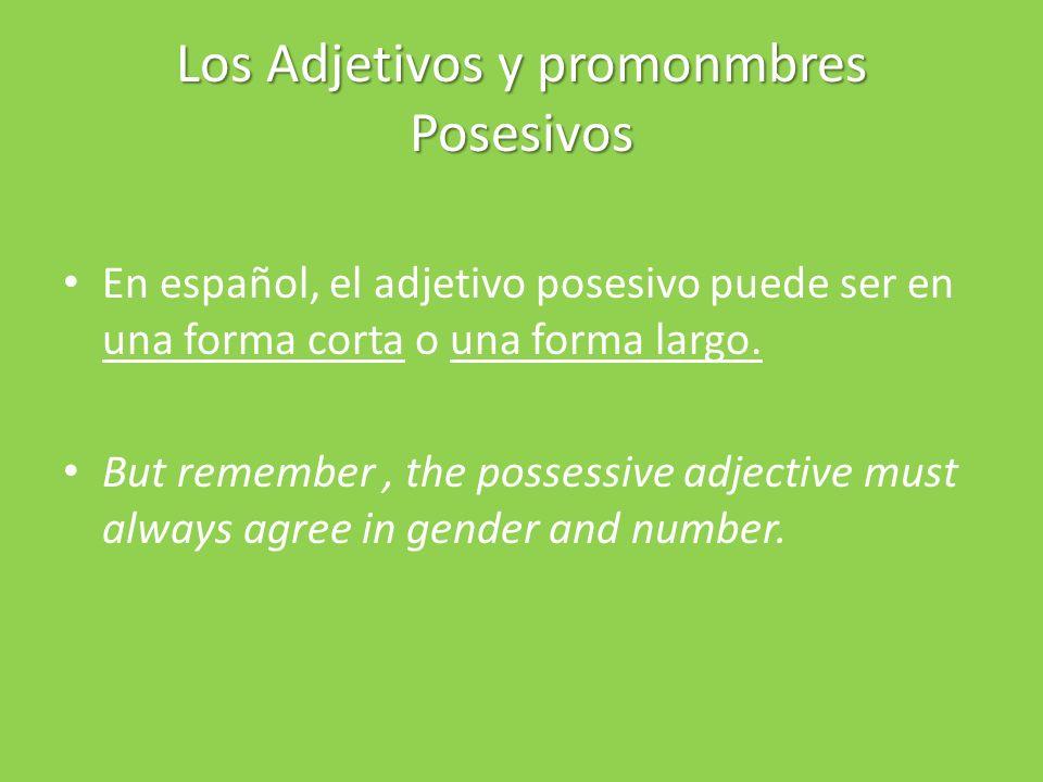 Los Adjetivos y promonmbres Posesivos En español, el adjetivo posesivo puede ser en una forma corta o una forma largo.