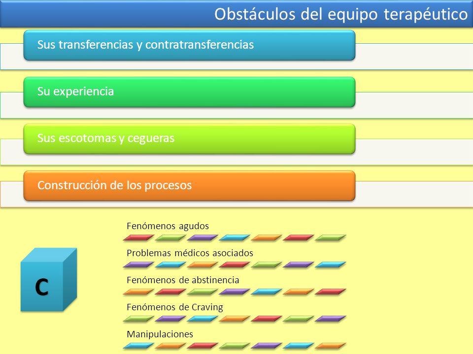 Obstáculos del equipo terapéutico Sus transferencias y contratransferenciasSu experienciaSus escotomas y ceguerasConstrucción de los procesos Fenómeno