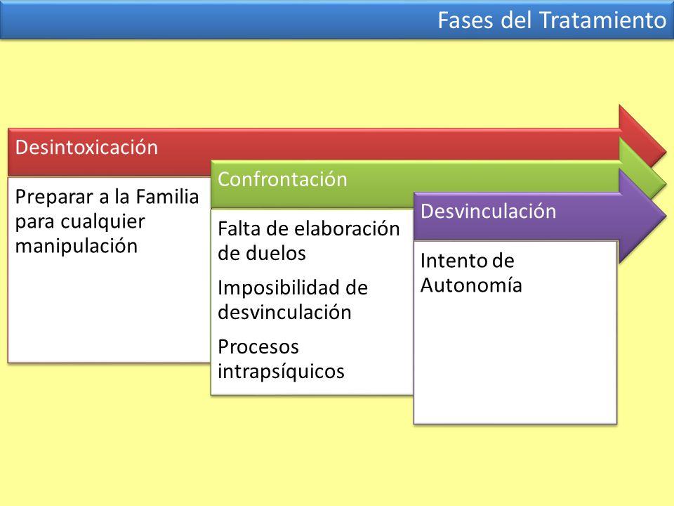 Fases del Tratamiento Desintoxicación Preparar a la Familia para cualquier manipulación Confrontación Falta de elaboración de duelos Imposibilidad de