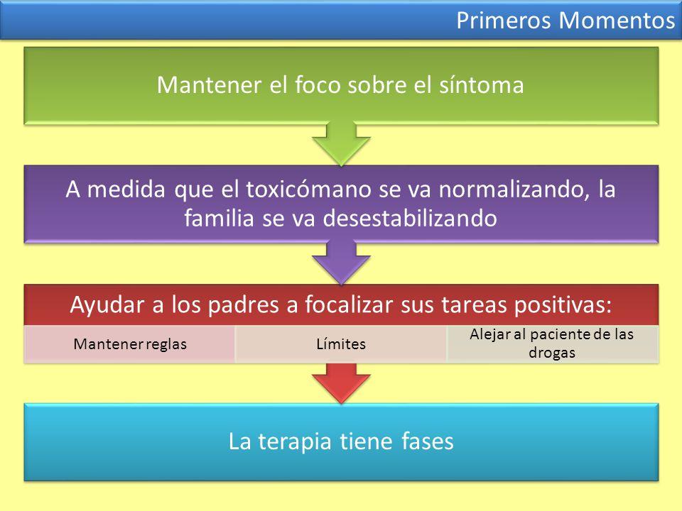 Primeros Momentos La terapia tiene fases Ayudar a los padres a focalizar sus tareas positivas: Mantener reglasLímites Alejar al paciente de las drogas