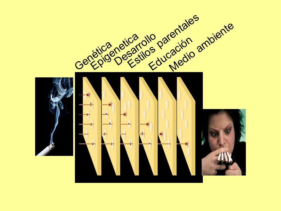 El consumo crónico de drogas genera: Cambios Neuroadaptativos y fortalecimiento de las conexiones de la nueva memoria en varios circuitos del cerebro Las Drogas han secuestrado el cerebro de los circuitos naturales de la motivación Las drogas son la única motivación