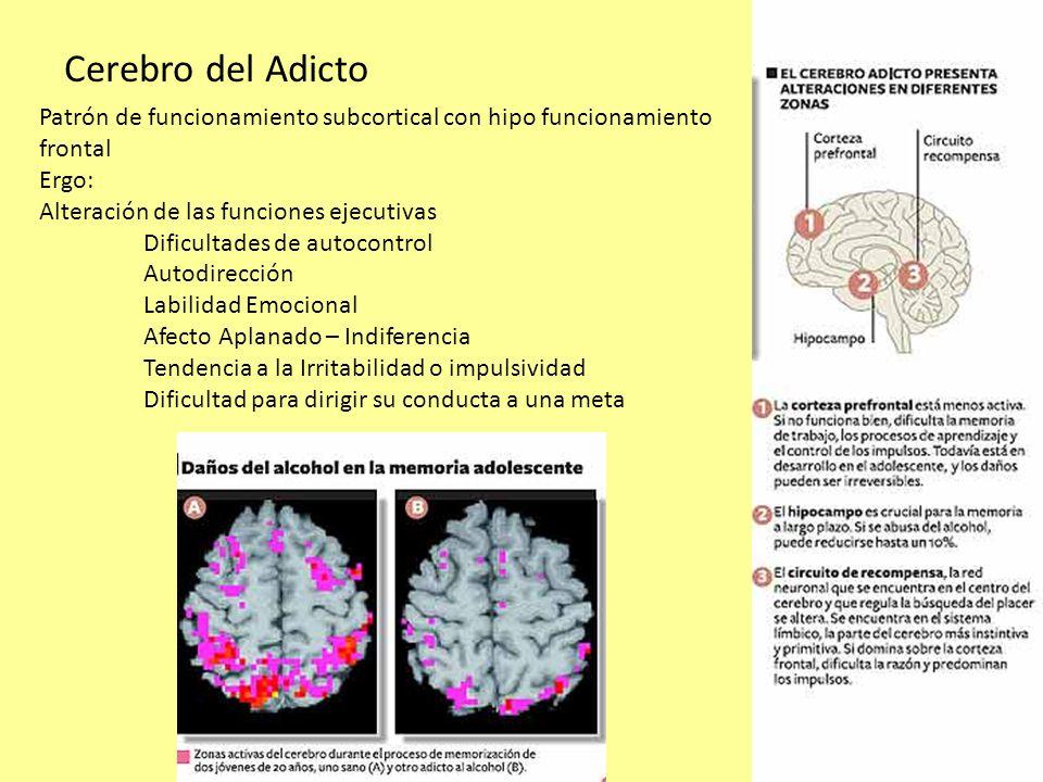 La atención permite la focalización de uno o varios estímulos Sostener la atención Distinguir lo principal de lo accesorio La memoria : Almacenar el material, Codificarlo Función ejecutiva: Planificar, Comprender totalidades Organizar funciones Monitoreo de las actividades Conocer el mundo en que nos movemos Viso-Percepción Habilidades Motoras El problema de la Rehabilitación Neuro-psicológica
