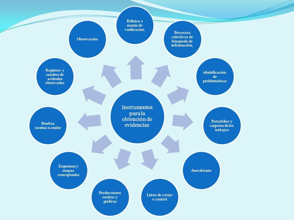 Instrumentos para la obtención de evidencias Rúbrica o matriz de verificación. Proyectos colectivos de búsqueda de información, identificación de prob