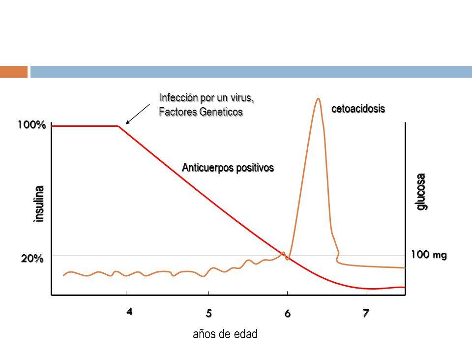 4 657 insulina glucosa 100% 20% 100 mg Infección por un virus, Factores Geneticos Anticuerpos positivos cetoacidosis años de edad