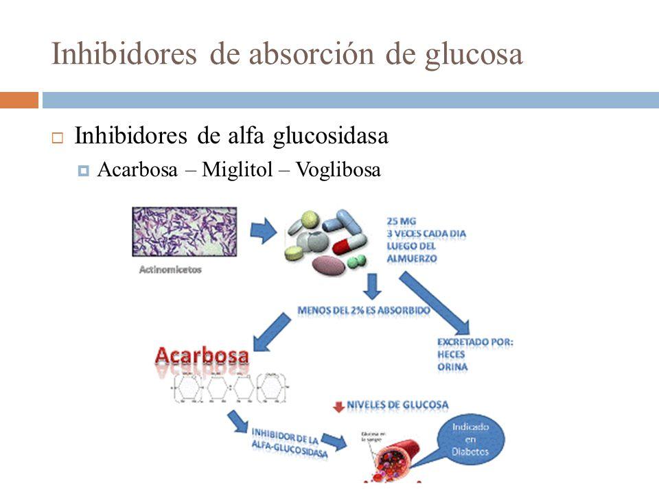 Inhibidores de absorción de glucosa Inhibidores de alfa glucosidasa Acarbosa – Miglitol – Voglibosa