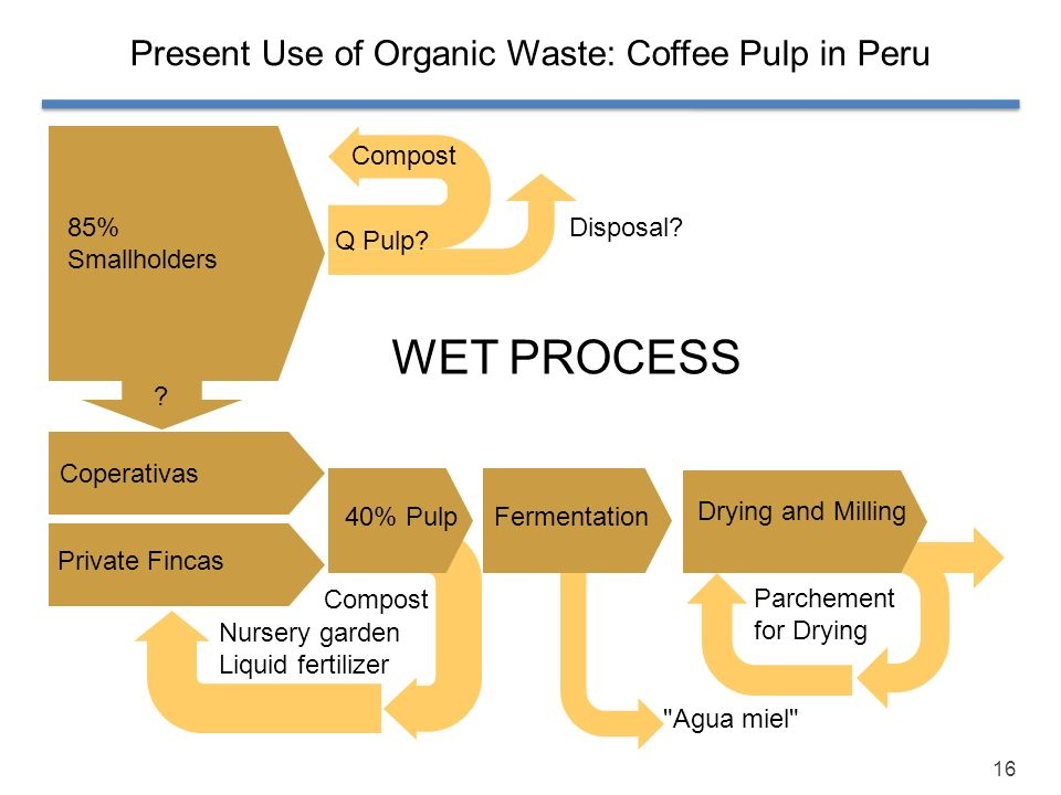 16 Present Use of Organic Waste: Coffee Pulp in Peru 85% Smallholders Parchement for Drying 40% Pulp Compost Q Pulp? Disposal? Private Fincas Coperati