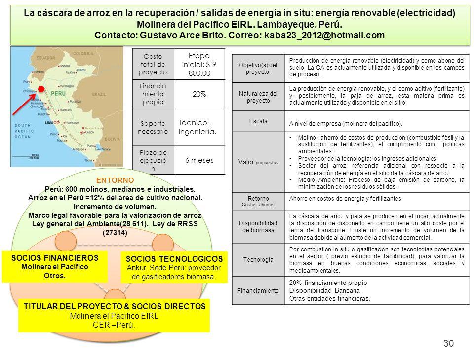 30 La cáscara de arroz en la recuperación / salidas de energía in situ: energía renovable (electricidad) Molinera del Pacifico EIRL. Lambayeque, Perú.